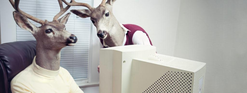 Corporate Newsroom